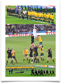 RUGBY WORLD CUP COLLAGE - Carol Sparkes